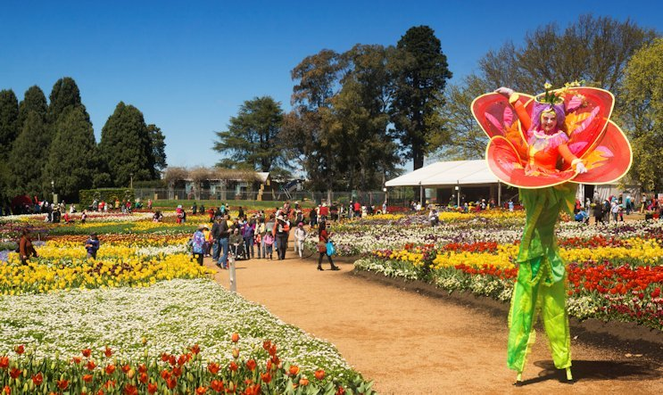 Hertz Car Sale >> Floriade Festival | Canberra ACT | DriveNow Events